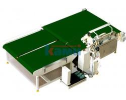Станок для окантовочной сшивки матрасов Quilty Machenery. Модель OS-4A